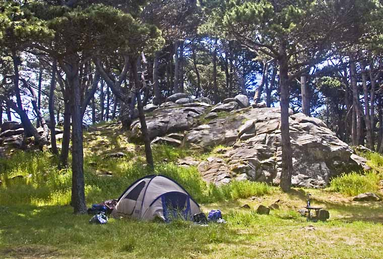 Camping tent site with meadow, trees and rock in background